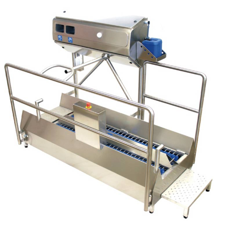 Hygiene station compact with mechnical cleaning of soles ant automatic hand disinfection